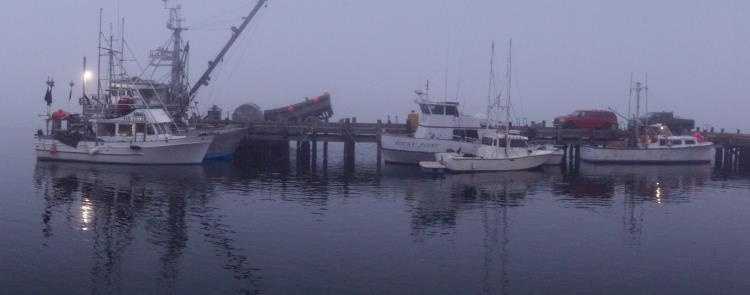 Morro Bay Dock in the Fog